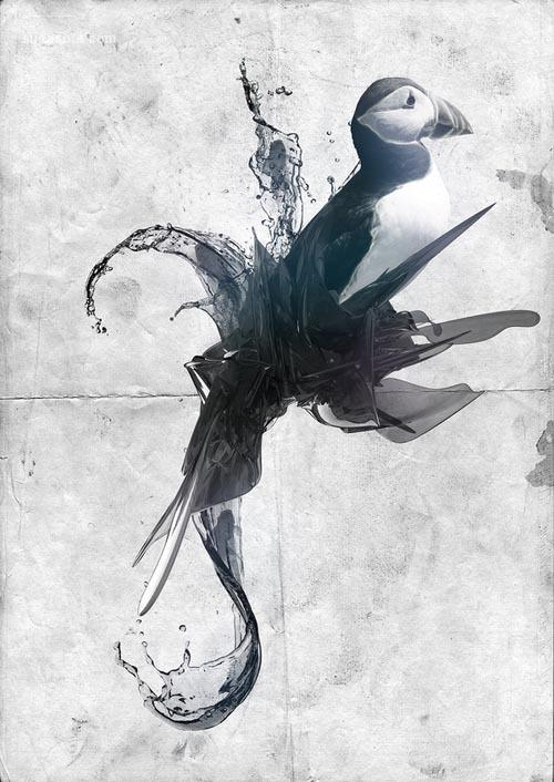 19张以鸟为主题的数字艺术作品欣赏
