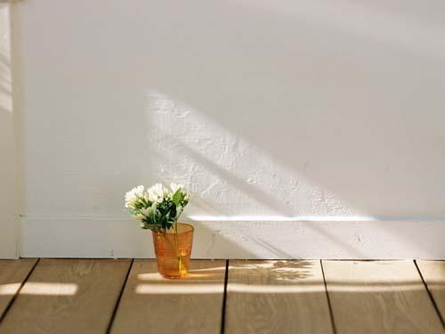 日式静物摄影- 夏日印象