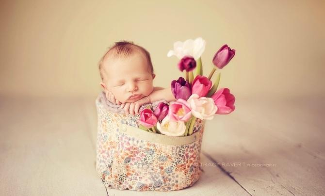 Tracy Raver 婴儿摄影欣赏