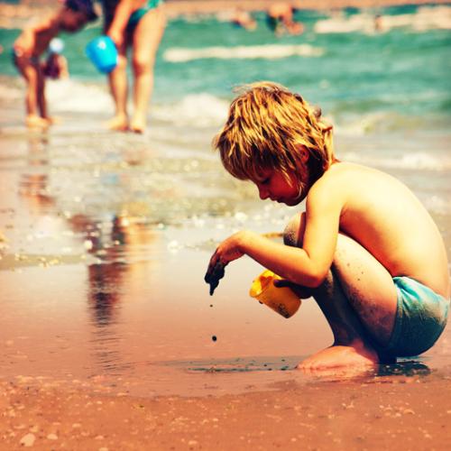 美丽的夏日主题照片