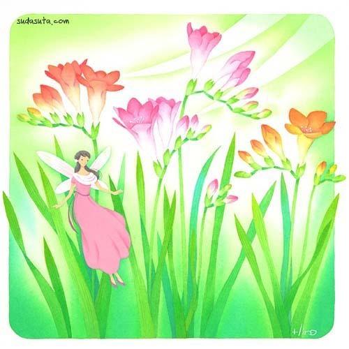 森宽子 浪漫的花卉插画欣赏