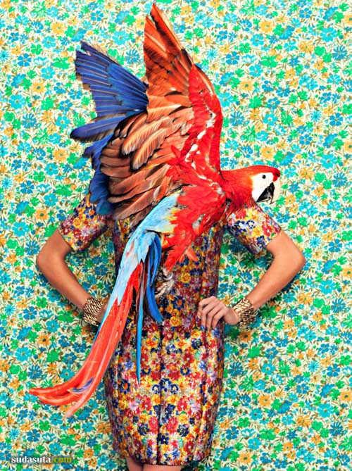 时尚摄影作品《Flight Patterns》