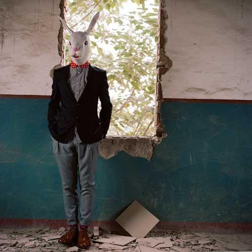 倾内×时光书 亲爱的兔子先生