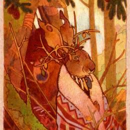 lauren 动物插画欣赏