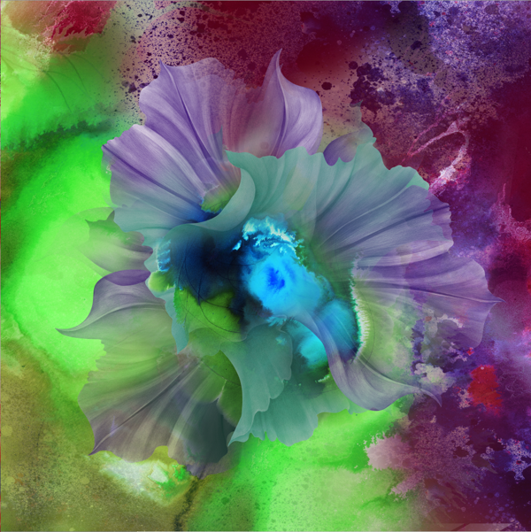 kahori maki 花束