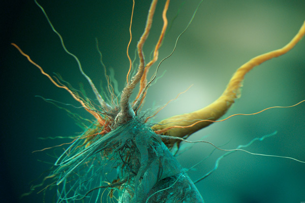 http://dizorb.com/2012/08/24/hd-wallpaper-growth-of-cubic-bacteria/