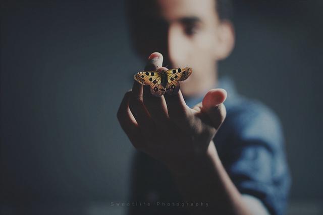 Mahmoud Hiepo 爱生活,爱摄影