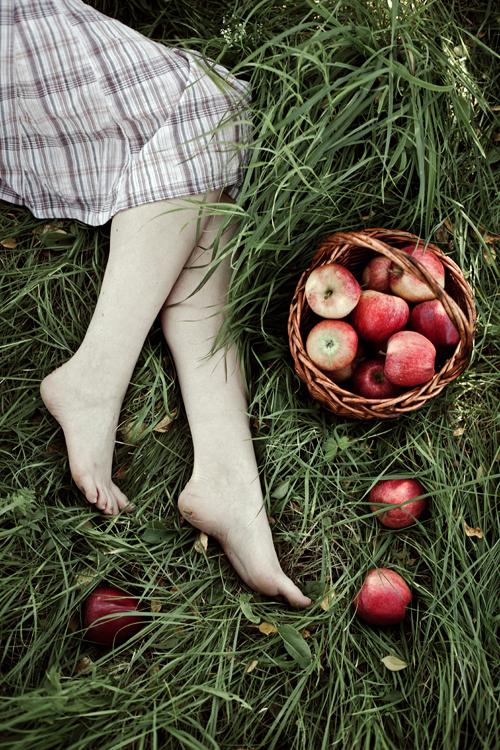 Andrea Hübner 苹果与女生