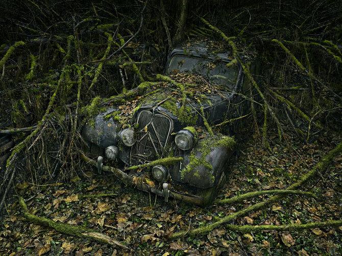 Peter Lippmann 被遗弃的汽车
