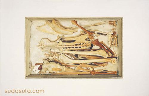 鸟骨 万圣节的死亡