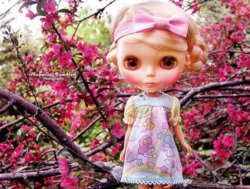 Lauren Musni家的可爱玩具