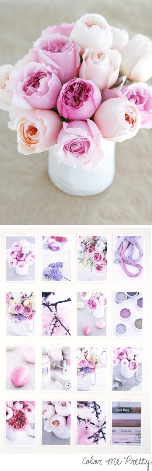暖紫*春色
