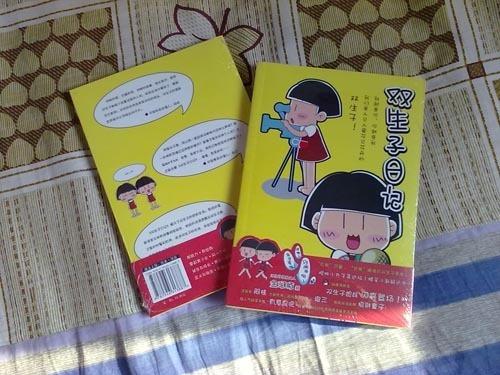 双生子日记新书抢先看