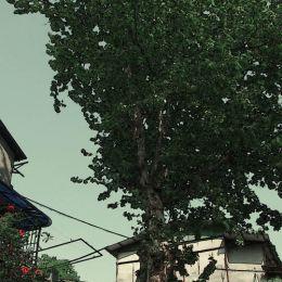 武汉老街道记
