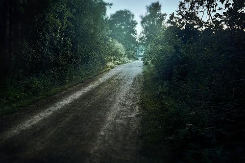 来自Latyrx的细腻摄影作品欣赏