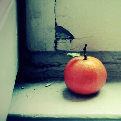 法国里昂摄影师Julie de Waroquier作品