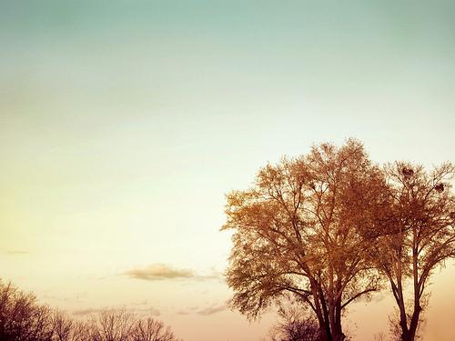 在这个冬天,我爱你