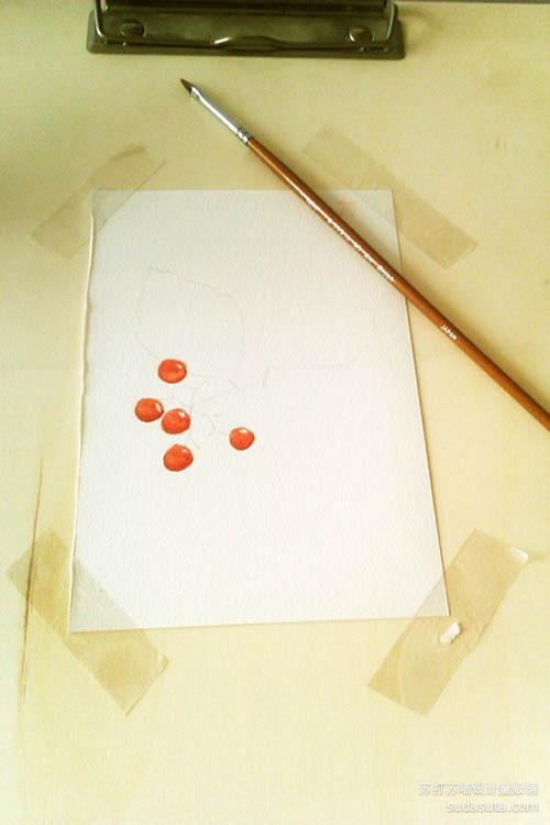 把上一张稿用透写台描到水彩纸上。200g 全能画纸+温莎牛顿水彩。这种红色是:大红+橙色。把画纸固定在画板上~开始上色~要注意果果的明暗,反光记得留白~等画面快干透,阴影处再刷一笔熟褐色。