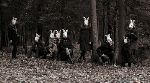 perhydrol 兔子先生的面具