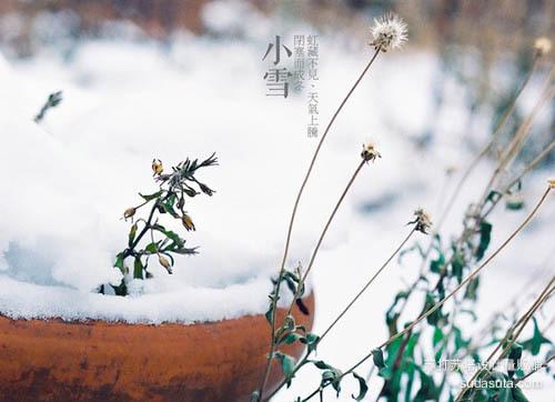 小雪——虹藏不见、天气上腾、闭塞而成冬