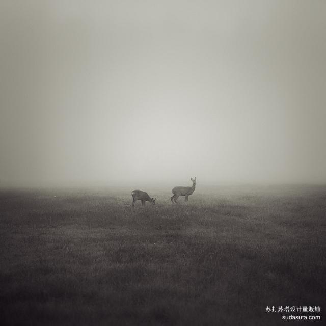Jürgen Heckel 摄影作品欣赏