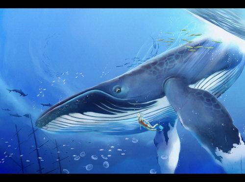 Megatruh 左眼看到大海 右耳听见花开