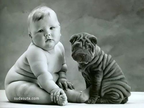 可爱宠物图片分享
