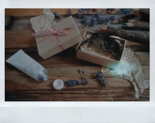 Marie Zucker 复古主义摄影作品欣赏