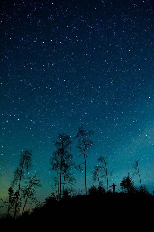 Mikko Lagerstedt 星星满天飞