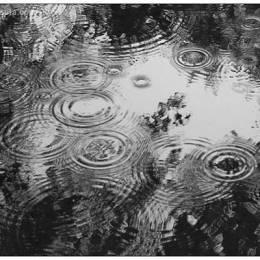 40个极其浪漫的雨中摄影