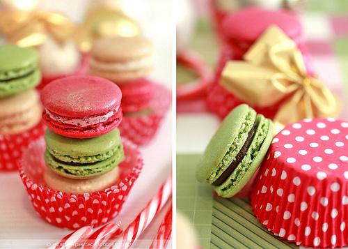 马卡龙(Macaron)-少女的酥胸