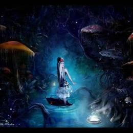 来自Lilla Marton的非常漂亮的照片合成
