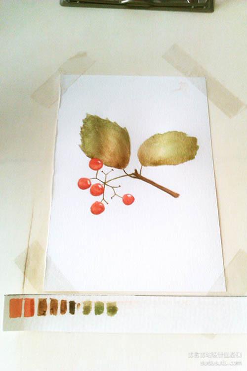 用熟褐色和绿色调和画叶子
