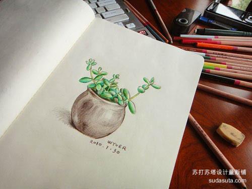 菡萏Wyver 清新小可爱 铅笔手绘插图