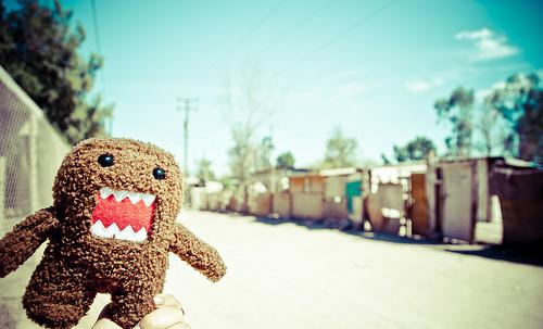 多摩君 棕色怪物生活