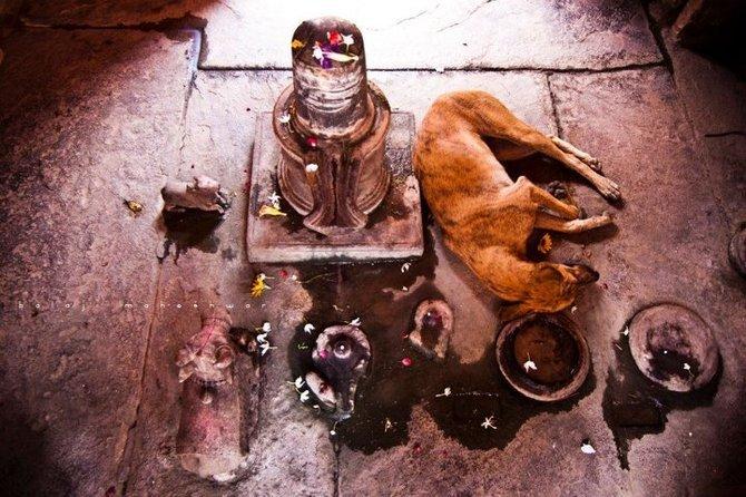Balaji Maheshwar 旅行者日记