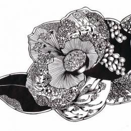 Hina Aoyama 细若游丝的剪纸艺术