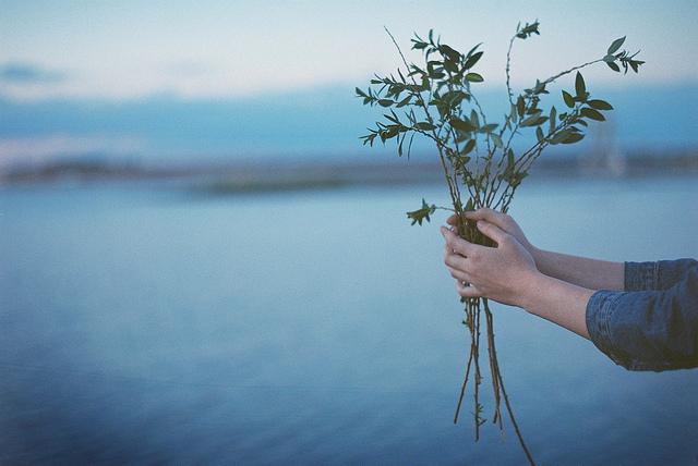Yasya Fogelgardt 浪漫主义摄影作品欣赏