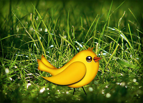 Let's Create a Cute Bird Vector in Photo shop<br /> http://websoulz.com/let%E2%80%99s-create-a-cute-bird-vector-in-photoshop/