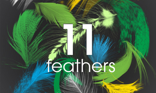 11 Feathers – PS brush<br /> http://muiskis.deviantart.com/art/11-Feathers-PS-brush-257286027