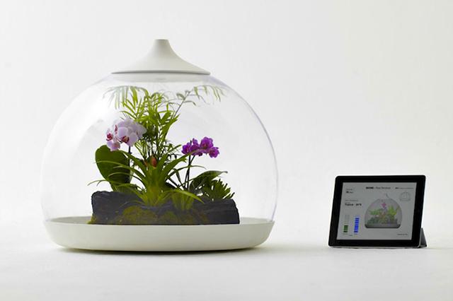 通过iPad控制的的生物群落智能水晶球<br /><br /> http://www.tuaw.com/2011/11/14/biome-smart-terrarium-controlled-by-ipad/