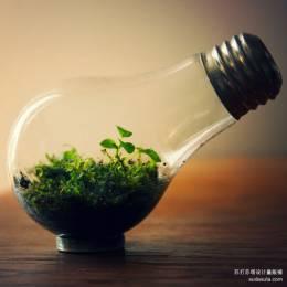 神奇的水晶球 微小可爱的生活世界