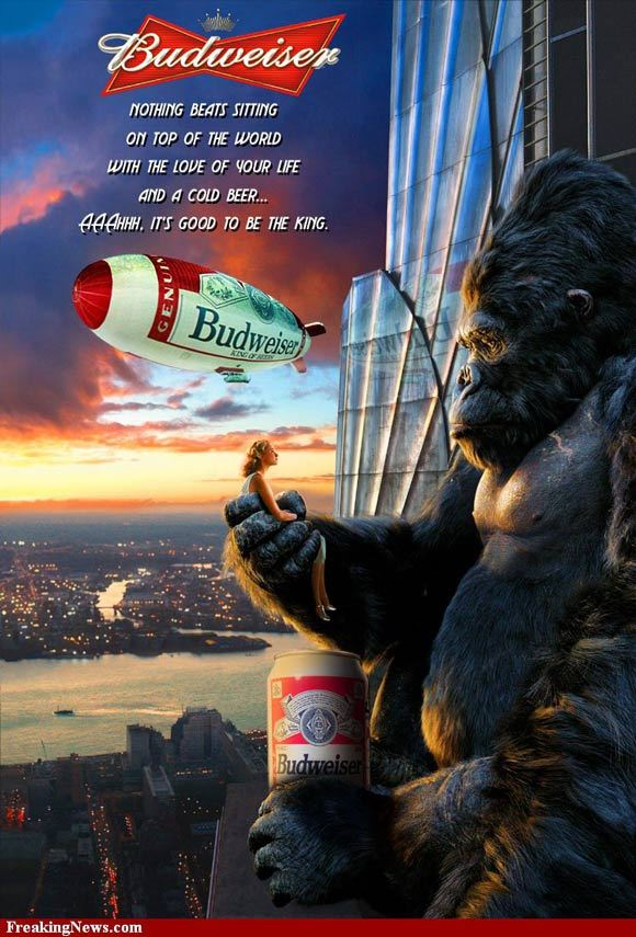 The King Kong Of Beers<br /> http://www.freakingnews.com/The-King-Kong-Of-Beers-Pictures-51933.asp