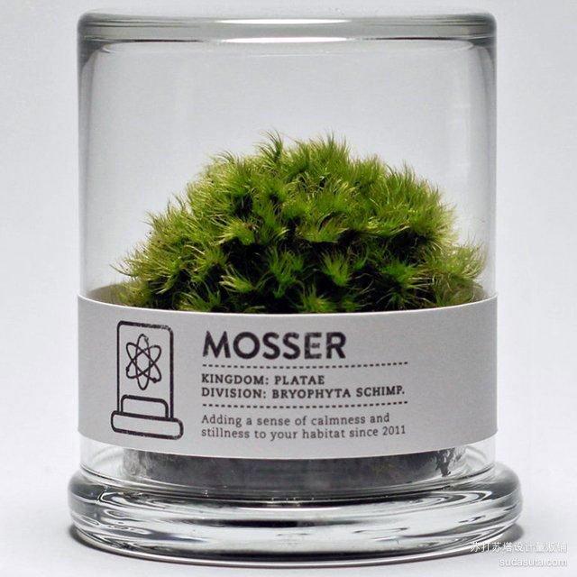 莫斯尔莫斯水晶球<br /><br /> http://www.gearhungry.com/2012/04/mosser-glass-moss-terrarium.html