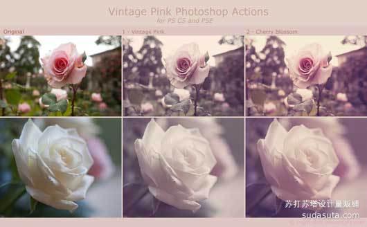 年份粉红行动<br /> http://night-fate.deviantart.com/art/Vintage-Pink-Actions-77790198?