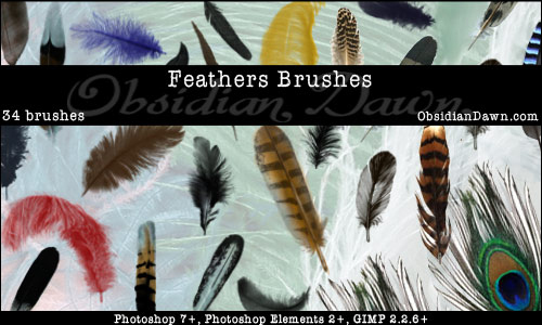 Feathers Photoshop Brushes<br /> http://redheadstock.deviantart.com/art/Feathers-Photoshop-Brushes-42660757