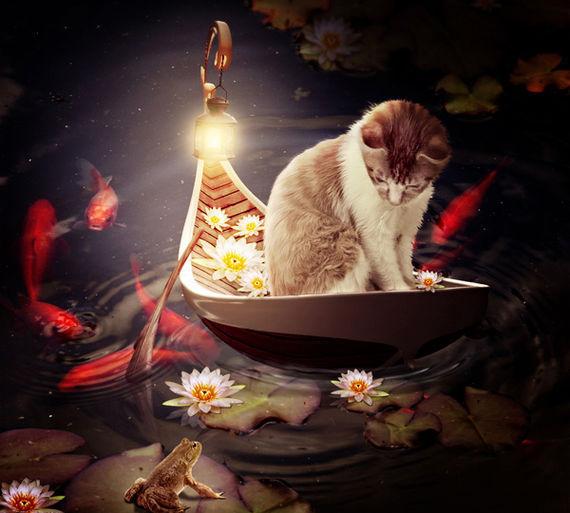 在photoshop中绘制一个小猫坐小船的超现实主义插画<br /> http://psd.fanextra.com/tutorials/photo-effects/members-area-tutorial-create-a-cat-in-a-magical-pond-scene-photo-manipulation/