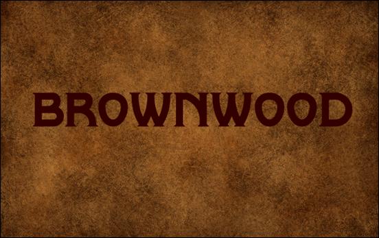 Brownwood<br /><br /> http://www.1001freefonts.com/Brownwood.php