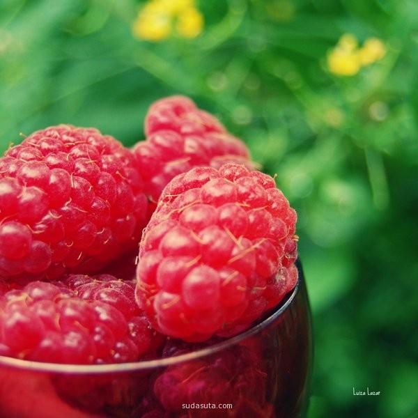 summer raspberries in a cup.