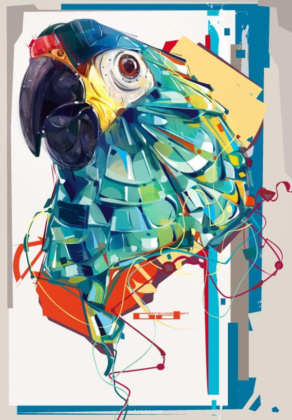 macao parrot illustrations
